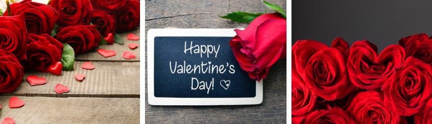 Bloemen voor Valentijnsdag kopen bij Tuincentrum De Wildernis